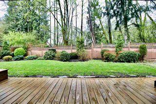 "Photo 19: 16130 BROOKSIDE Grove in Surrey: Fraser Heights House for sale in ""Fraser Glen"" (North Surrey)  : MLS®# R2355438"