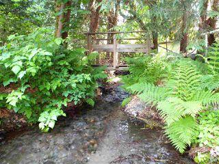 """Photo 6: 66553 SUMMER Road in Hope: Hope Kawkawa Lake House for sale in """"EAST KAWKAWA LK"""" : MLS®# R2374371"""