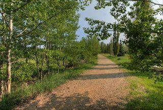 Photo 28: 706 DALHOUSIE Way in Edmonton: Zone 20 House for sale : MLS®# E4159081