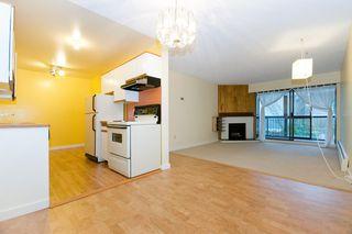 Photo 11: 206 9202 Horne Street in Lougheed Estates: Home for sale : MLS®# V802193