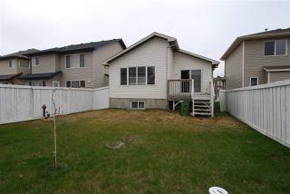 Photo 17: 4228 162 Avenue in Edmonton: Zone 03 House for sale : MLS®# E4161759