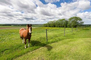 Main Photo: 40044 TWP 444: Rural Ponoka County House for sale : MLS®# E4161768