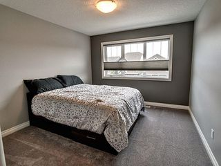 Photo 17: 827 Eagleson Link in Edmonton: Zone 57 House for sale : MLS®# E4163933