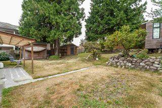 "Photo 15: 12877 102 Avenue in Surrey: Cedar Hills House for sale in ""Cedar Hills"" (North Surrey)  : MLS®# R2386743"