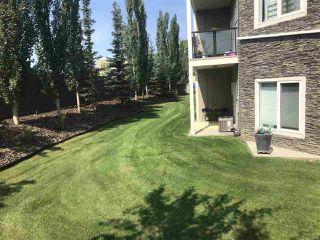 Photo 22: 146 10121 80 Avenue in Edmonton: Zone 17 Condo for sale : MLS®# E4168018