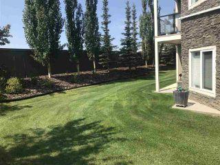 Photo 21: 146 10121 80 Avenue in Edmonton: Zone 17 Condo for sale : MLS®# E4168018