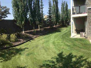 Photo 23: 146 10121 80 Avenue in Edmonton: Zone 17 Condo for sale : MLS®# E4168018