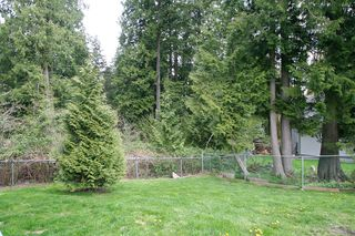 Photo 16: 15887 102B Avenue in Surrey: Guildford House for sale (North Surrey)  : MLS®# F1111321