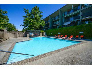"""Photo 13: 304 9300 GLENACRES Drive in Richmond: Saunders Condo for sale in """"SHARON GARDENS"""" : MLS®# V1128527"""