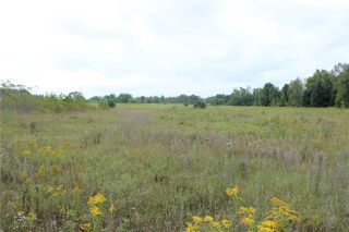 Photo 4: Lot 13 Portage Road in Kawartha Lakes: Kirkfield Property for sale : MLS®# X3306942
