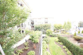 "Photo 16: 318 13789 107A Avenue in Surrey: Whalley Condo for sale in ""Quattro 2"" (North Surrey)  : MLS®# R2108947"