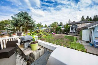 Photo 18: 21664 126 Avenue in Maple Ridge: West Central House for sale : MLS®# R2186936