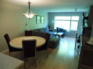 Photo 4: 305 300 KLAHANIE DRIVE in Port Moody: Port Moody Centre Condo for sale : MLS®# R2174432