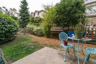 "Photo 20: 11 15068 58TH Street in Surrey: Sullivan Station Townhouse for sale in ""Summer Ridge"" : MLS®# R2205404"