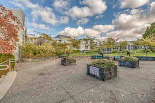"Photo 18: 313 7700 ST. ALBANS Road in Richmond: Brighouse South Condo for sale in ""SUNNYVALE"" : MLS®# R2219221"