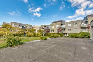 "Photo 19: 313 7700 ST. ALBANS Road in Richmond: Brighouse South Condo for sale in ""SUNNYVALE"" : MLS®# R2219221"