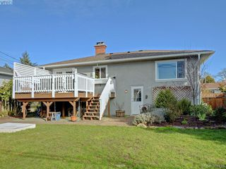 Photo 18: 3232 Frechette St in VICTORIA: SE Camosun Single Family Detached for sale (Saanich East)  : MLS®# 780628