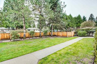 Photo 16: 12 2120 CENTRAL AVENUE in Port Coquitlam: Central Pt Coquitlam Condo for sale : MLS®# R2255518
