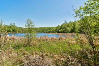 Photo 9: 86 53303 RGE RD 20 Road: Rural Parkland County House for sale : MLS®# E4110205
