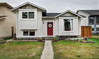 Photo 1: 959 MCKENZIE Drive SE in Calgary: McKenzie Lake House for sale : MLS®# C4183479