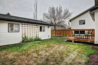 Photo 8: 959 MCKENZIE Drive SE in Calgary: McKenzie Lake House for sale : MLS®# C4183479