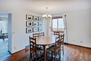 Photo 19: 959 MCKENZIE Drive SE in Calgary: McKenzie Lake House for sale : MLS®# C4183479