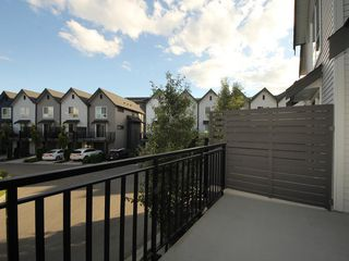 "Photo 13: 16 2325 RANGER Lane in Port Coquitlam: Riverwood Townhouse for sale in ""Fremont Blue"" : MLS®# R2272901"
