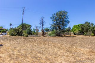 Photo 5: FALLBROOK Property for sale: 0000 Calavo Rd