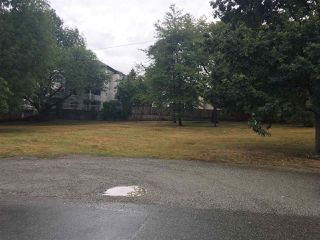 "Main Photo: 20565 BATTLE Avenue in Maple Ridge: Southwest Maple Ridge Land for sale in ""Upper Hammond"" : MLS®# R2304234"