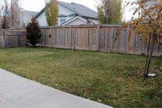 Photo 25: 7821 163 Avenue in Edmonton: Zone 28 House for sale : MLS®# E4145482