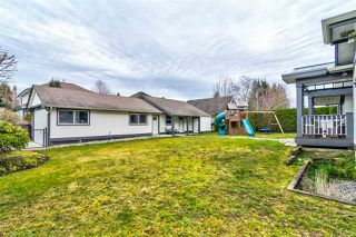 "Photo 19: 21841 44 Avenue in Langley: Murrayville House for sale in ""Murrayville"" : MLS®# R2349449"