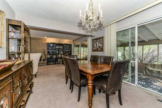 Photo 16: 80 QUESNELL Crescent in Edmonton: Zone 22 House for sale : MLS®# E4157485