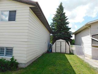Photo 28: 4301 51 Street: Gibbons House for sale : MLS®# E4161283