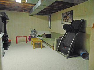 Photo 23: 4301 51 Street: Gibbons House for sale : MLS®# E4161283