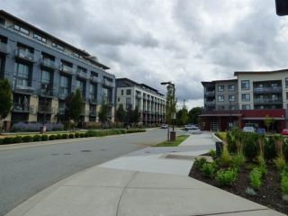 Photo 3: 501 3090 GLADWIN Road in Abbotsford: Central Abbotsford Condo for sale : MLS®# R2388022