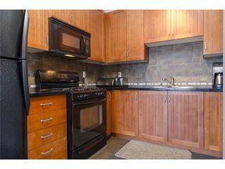 Photo 9: 61 6300 LONDON Road: Steveston South Home for sale ()  : MLS®# V1074703