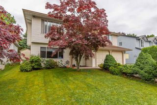 Photo 1: 2592 MITCHELL Street in Abbotsford: Abbotsford West House for sale : MLS®# R2461293
