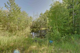 Photo 28: 51416 SH 759: Rural Parkland County House for sale : MLS®# E4201474
