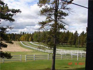 Photo 8: 25 MIN NW OF COCHRANE in COCHRANE: Rural Rocky View MD Residential Detached Single Family for sale : MLS®# C3474326
