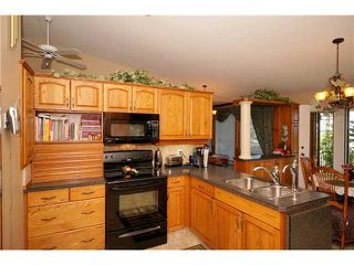 Photo 4: 77 GLENVIEW Road in COCHRANE: Rural Rocky View MD Residential Detached Single Family for sale : MLS®# C3594402