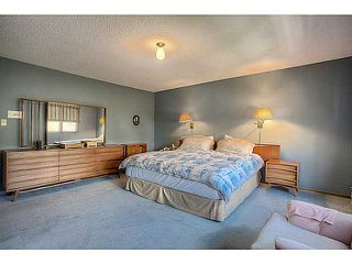 Photo 10: 2609 10 Street SW in Calgary: Mount Royal Residential Detached Single Family for sale : MLS®# C3617180