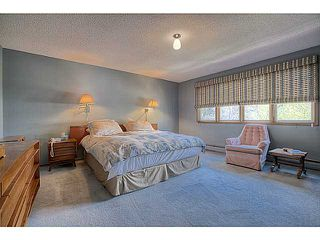 Photo 11: 2609 10 Street SW in Calgary: Mount Royal Residential Detached Single Family for sale : MLS®# C3617180