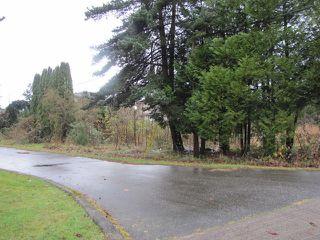 Photo 2: 26791 FRASER Highway in Langley: Aldergrove Langley Land for sale : MLS®# F1438267