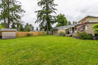 Photo 15: 11609 ADAIR Street in Maple Ridge: East Central House for sale : MLS®# R2082990