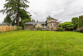 Photo 16: 11609 ADAIR Street in Maple Ridge: East Central House for sale : MLS®# R2082990