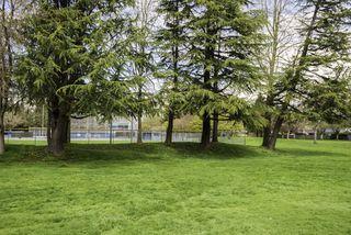 Photo 18: 8 4388 MONCTON Street in Richmond: Steveston South Townhouse for sale : MLS®# R2157662