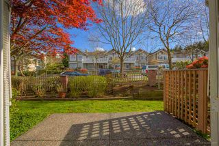 "Photo 25: 2 5201 OAKMOUNT Crescent in Burnaby: Oaklands Townhouse for sale in ""HARLANDS"" (Burnaby South)  : MLS®# R2161248"