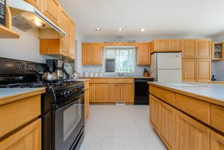 Photo 8: 5615 252 Street in Langley: Salmon River House for sale : MLS®# R2195725