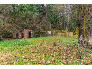 Photo 19: 9099 192 Street in Surrey: Port Kells House for sale (North Surrey)  : MLS®# R2204696