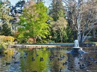 Photo 14: 1401 647 Michigan St in VICTORIA: Vi James Bay Condo for sale (Victoria)  : MLS®# 770846